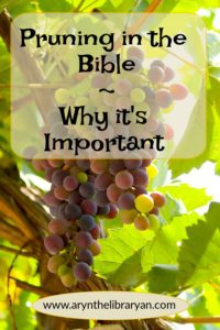Grapevine: pruning in the Bible, why it's so important