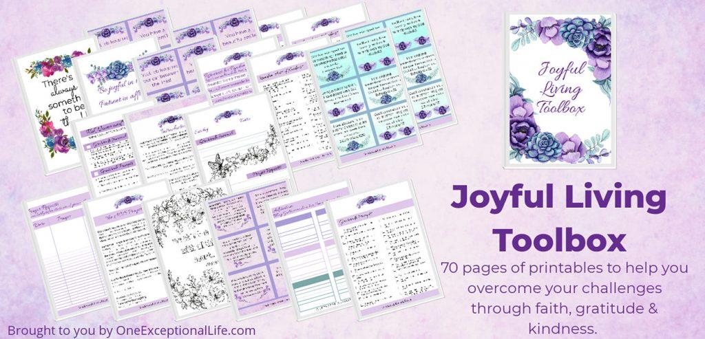 Joy Toolbox